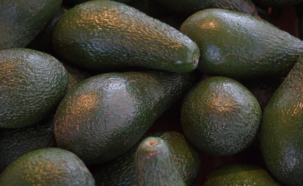 avocados-318198_1280